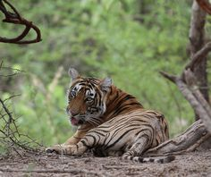 500px / T30 cub by Sriskandh Subramanian