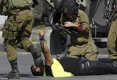 Terrorist disguised as photographer who stabbed an IDF soldier in Hebron - 10-16-2015. Source: Haaretz