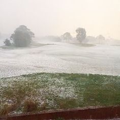 Golf Course or Ski field! Not a lot of golf being played this afternoon. . @bonniedoongc #Sydney #Hailstorm