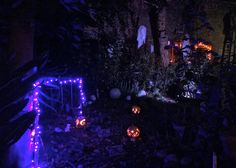 Pumpkins, ghosts, and haunted portraits- Nightmare before Christmas party