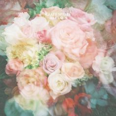 """Craft Spells - Idle Labor Personal Favorite: """"The Fog Rose High"""" Amazing Flowers, Pretty In Pink, Beautiful Flowers, Pretty Roses, Dream Pop, Oscar Wilde, Holy Mary, Album Covers, Music Covers"""