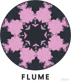 FLUME | Poster - Visit Amy FM | www.amyfm.nz