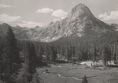 1933 The Hermit by Ansel Adams 84.90.746