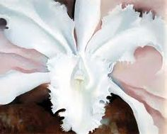 Narcissa's Last Orchid, 1940 by Georgia O'Keeffe on Curiator, the world's biggest collaborative art collection. Georgia O'keefe Art, Georgia O Keeffe Paintings, New York Art, Famous Artists, Illustrations, Art Reproductions, American Artists, Flower Art, Orchids