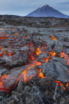 """ Lava there comes - Kamchatka Peninsula, Russia Natural Phenomena, Natural Disasters, Volcan Eruption, Erupting Volcano, Cool Pictures, Beautiful Pictures, Foto Fun, Beau Site, Lava Flow"