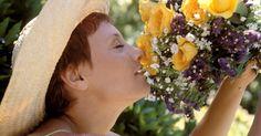 O que fazer para que flores naturais durem para sempre