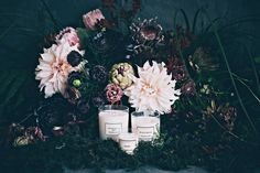 Live a fragrant life with George&Edi's beautiful natural soy wax candles. Made in Wanaka, and wrapped in gorgeous botanical paper, these candles make the best gifts. Gift Bouquet, Diamond Flower, Soy Wax Candles, Candle Making, A Boutique, Best Gifts, Floral, Flowers, Prints