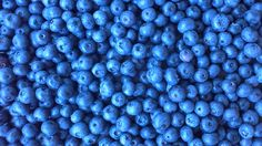 Blueberries <3