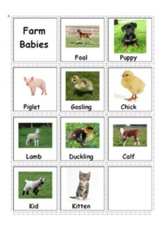 $ Autism & Special Needs. Adapted Book: Farm Animals & Their Babies for more resources follow http://www.pinterest.com/angelajuvic/angie-s-tpt-store/
