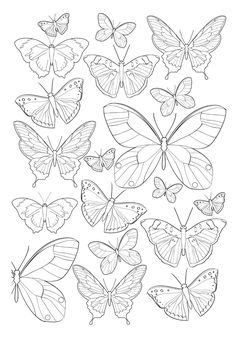 garden drawing Jardim Encantado - Antistress Coloring Book n .-- Enchanted Garden Antistress Coloring Book n color Colouring Pages, Adult Coloring Pages, Coloring Books, Butterfly Coloring Page, Butterfly Drawing, Drawings Of Butterflies, Butterfly Mandala Tattoo, Paper Butterflies, Butterfly Painting