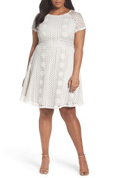 Main Image - Adrianna Papell A-Line Lace Dress (Plus Size)