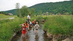 Bizau im Bregenzerwald: Wandern