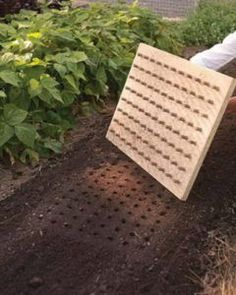 13 Use This DIY Planting Board To Create Perfect Rows In Your Garden