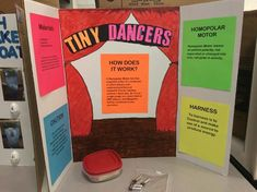 """The words """"Science Fair"""" can strike fear in the heart of parents, but here are over 75 Science Fair ideas to take the sting out of the project 2nd Grade Science Projects, Science Project Board, Science Fair Board, Second Grade Science, Middle School Science, Kids Science Lab, Science Experiments Kids, Affirmations For Kids, Science Quotes"""