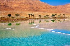 8 day itinerary to explore Jordan - Amman, Petra, Aqada and its coast of the Red Sea and Dead Sea-Jordan's coast of the Dead Sea. The Dead Sea – bordering Israel, the West Bank and Jordan – is a salt lake whose banks are more than 400m below sea level, the lowest point on dry land. Its water has an intense blue color but it is hypersaline water is what drives tourist to it (vvvita/Shutterstock.com)