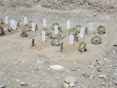 President Daoud and family member burial site.