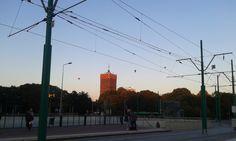 Dzień Chłopca #Poznań