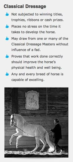 The horse comes first. I believe these focuses can be applied to modern dressage…