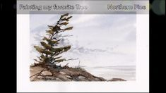 Paint a Northern Pine Tree. Quick and fun real-time watercolor demo. Peter Sheeler - New Ideas Watercolour Tutorials, Watercolor Artists, Watercolor Landscape, Abstract Landscape, Floral Watercolor, Watercolor Paintings, Watercolor Ocean, Painting Trees, Realistic Paintings