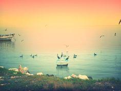 Como yo veo mi puerto hermoso ... A tomar mas fotos