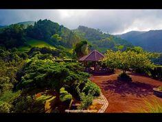 Ponta da Madrugada. S. Miguel. Azores Islands
