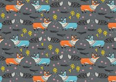 Foxes on Behance