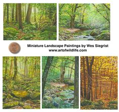Smoky Mountain landscape paintings by Wes Siegrist, watercolors