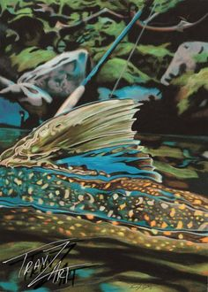 """Bull Trout"" Colored pencil drawing by Travis J.Sylvester. Reference photo courtesy of ""Bryan Huskey"""