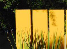 Steve Martino  landscape architect, sustainability: http://landarchs.com/weeds-walls-sustainability-steve-martino/