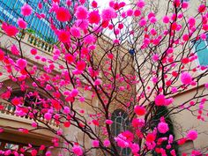 Hot pink flower tree