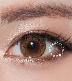 Royal Vision Creamy coloured contacts - the most natural color contact lenses for dark brown eyes! I love how these make your eyes look brighter and still look realistic! #colourcontacts #circlelens #eyecandys