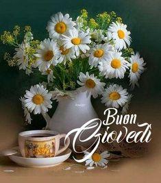 Buon Giovedì Buongiorno 🌼 Good Morning, Happy Birthday, Diy Crafts, Plants, Cards, Haiku, Thursday, Snoopy, Blog