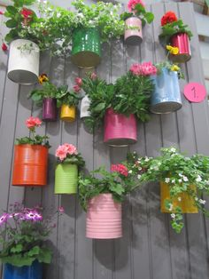Painted tin cans as flower pots                                                                                                                                                                                 More