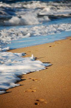 Let's take a walk along the beach...