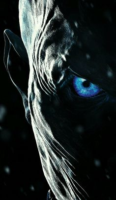 7 Best Live Wallpaper Iphone Images Games Bolton Game Of Thrones