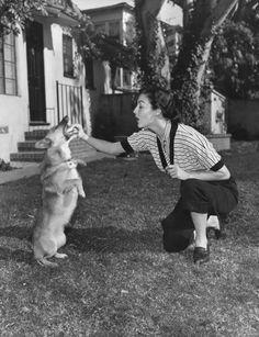 Ava Gardner and her Corgi Rags