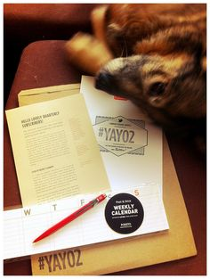 #YAY02 My dog wanted to be in my @Quarterly photo! by theLemonZest, via Flickr