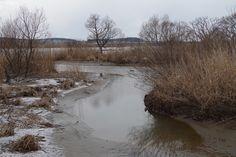 冬の最上川-2