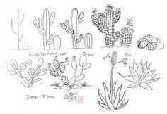 Draw Cactus by Diana-Huang.deviantart.com on @deviantART