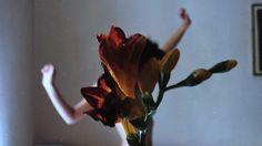 photography byyuliana mendoza a.k.a. silence effects
