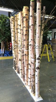 birch branches partition - Google Search                                                                                                                                                                                 More