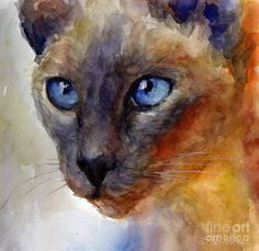 Siamese Cat 2 Painting  - Siamese Cat 2 Fine Art Print