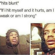 The 46 Best Stoner Memes On The Internet