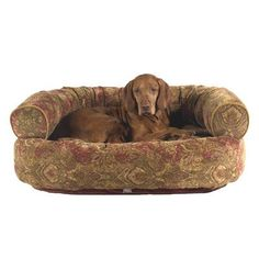 Double Donut MicroVelvet Dog Bed * See this great product.(This is an Amazon affiliate link and I receive a commission for the sales)