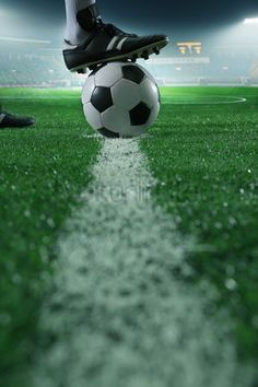 Find Close Foot On Top Soccer Ball stock images in HD and millions of other royalty-free stock photos, illustrations and vectors in the Shutterstock collection. Soccer Stadium, Football Stadiums, Football Soccer, Football Players, Football Records, Top Soccer, Play Soccer, Soccer Ball, Soccer Images