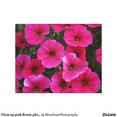 Close up pink flower photo canvas print