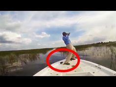 13 Histórias de pescador para rir ✱ 13 Amazing Fishing Stories 2016 ✱ Ví...