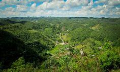 St Ann Jamaica