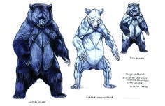 Concept Art for Walt Disney Feature Animation Production 'Brother Bear' Animal Sketches, Animal Drawings, Art Drawings, Drawing Art, Drawing Animals, Brother Bear, Bear Drawing, Anatomy Drawing, Animation