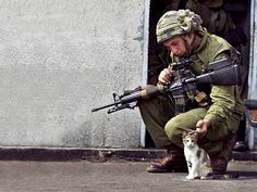 Cats in wartime